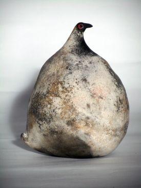black headed hen