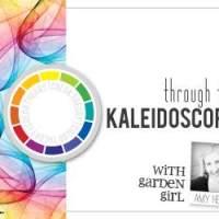 guest designing/interviews