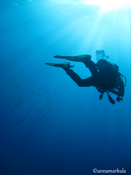 diver_and_light