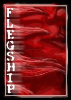 flegship3