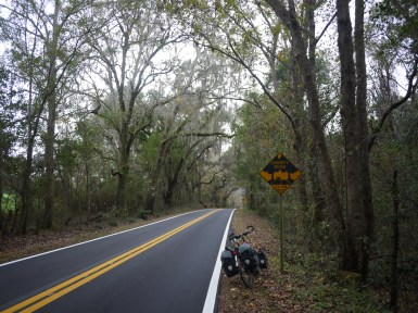Low Canopy Road, Florida