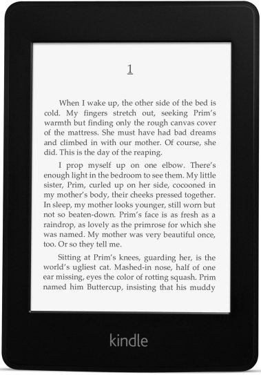 Kindle Paperwhite (Everyone needs a good book, or 3)