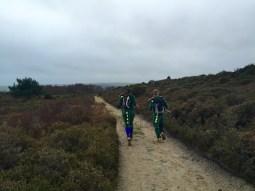 Dinos on the run near Poole