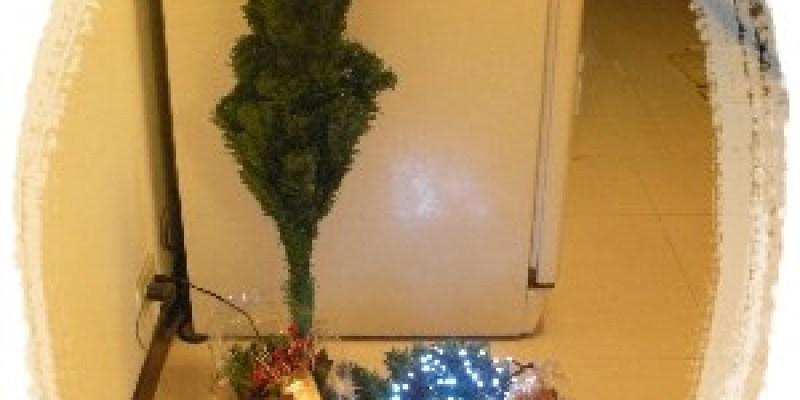 北風呼呼吹~來種聖誕樹囉!
