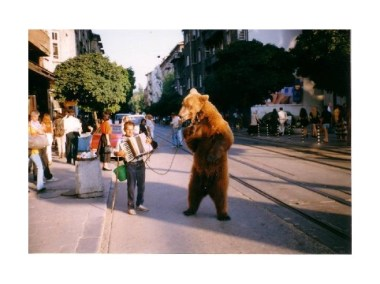 2364889-gipsies_and_bears-sofia