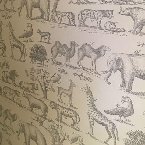 Andrew Martin ark wallpaper