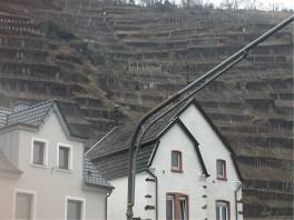 Up the vineyards from Dernau