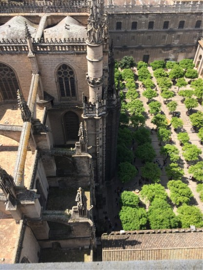 Saville Cathedral - looking down from the bell tower to the church and the associated Orange Grove