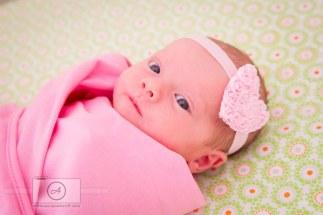 Newborn Photography AnnaOsetroff Newborn Photographer Brisbane