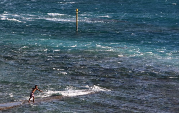 Fishing in the waves // Pêche entre les vagues