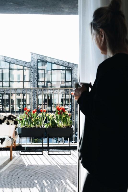 Fotograaf planten en bloemen - lifestyle fotografie Utrecht