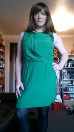 Anna Secret Poet New Green Dress 2
