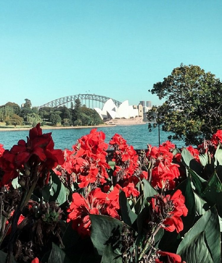 the-best-walks-in-and-around-sydney