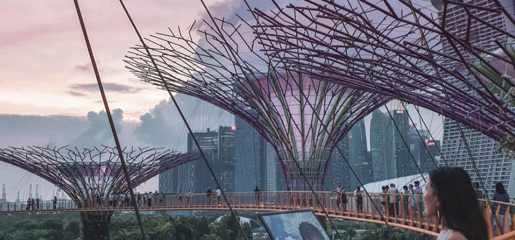 3 days Singapore Travel Guide- What to see, where to go and more