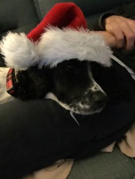 Enid Santa