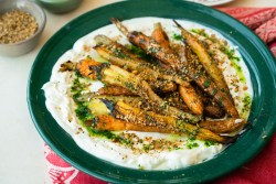 Roasted Carrot with Labneh and Herb Oil