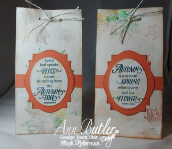 Sweet Autumn Stamped Gift Bags