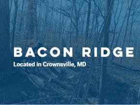Bacon Ridge