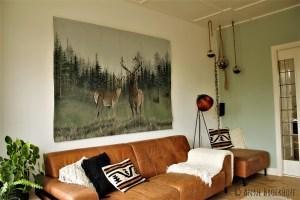 Anne Broekhoff kunst schilderijen