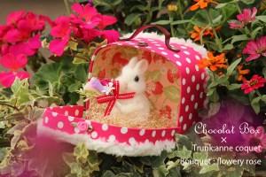 Chocolat Box4