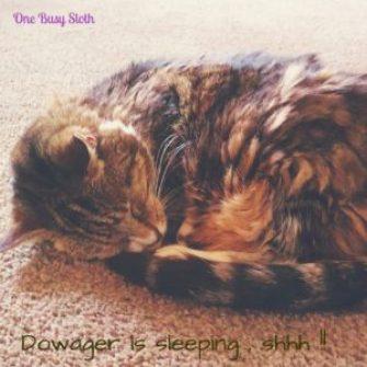 Sleeping Dowager