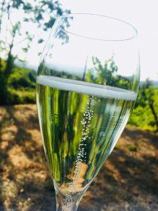 Vinkurs med Anne Fredrikstad. Lær mer om de ulike boblene i glasset!