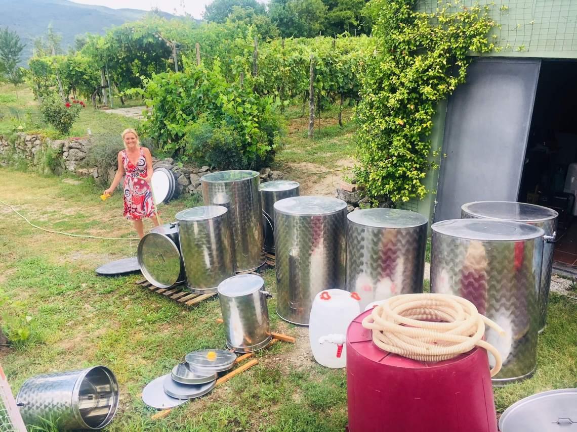 En vinkjeller får gjerne stå i fred om sommeren før ny vin skal settes på høsten. Men ikke i år. Det ble rett og slett sommerjobb i vinkjelleren på vingården i Italia. Du kjenner deg kanskje igjen, om du har en hytte? Du tror du skal ha ferie, men så dukker det opp uventede prosjekter.