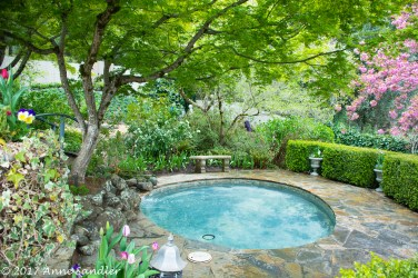 A meditation pool.