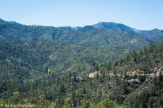 The surrounding hills.