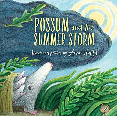 Children's Book - Possum and the Summer Storm