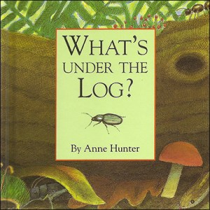 What's Under the Log?