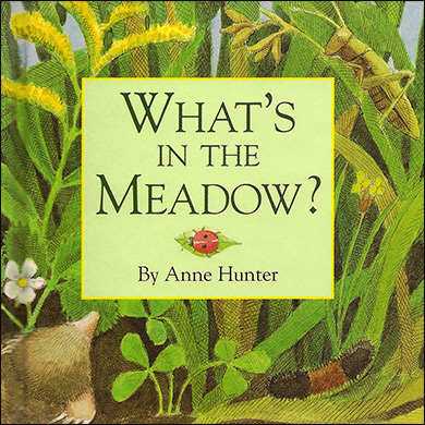 Children's Book - What's in the Meadow?