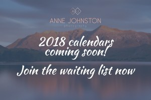 Watch this space for Anne Johnston's 2018 calendar