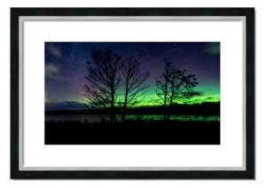 Fine art framed print of Northern Lights Through The Trees