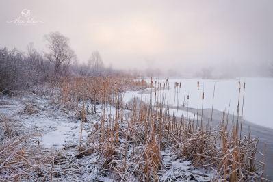 Brume sur le rivière Yamaska - Bromont - Qc