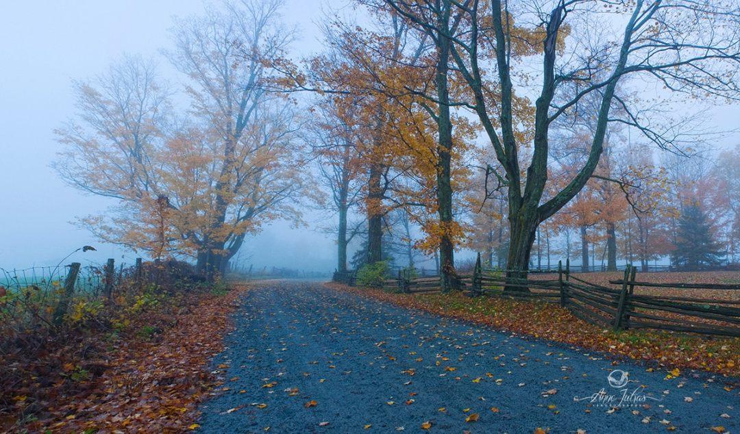 Privilégié le matin - belles photos d'automne