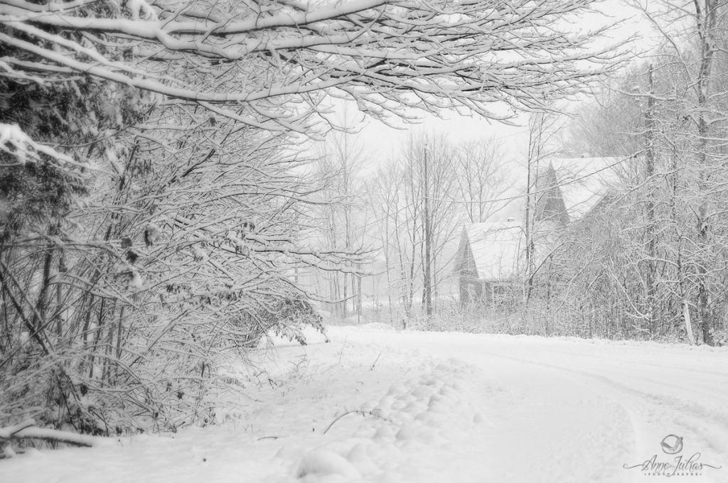 Comment réussir vos photos d'hiver