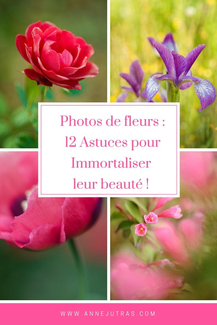 Photos de fleurs :12 astuces pour immortaliser leur beauté
