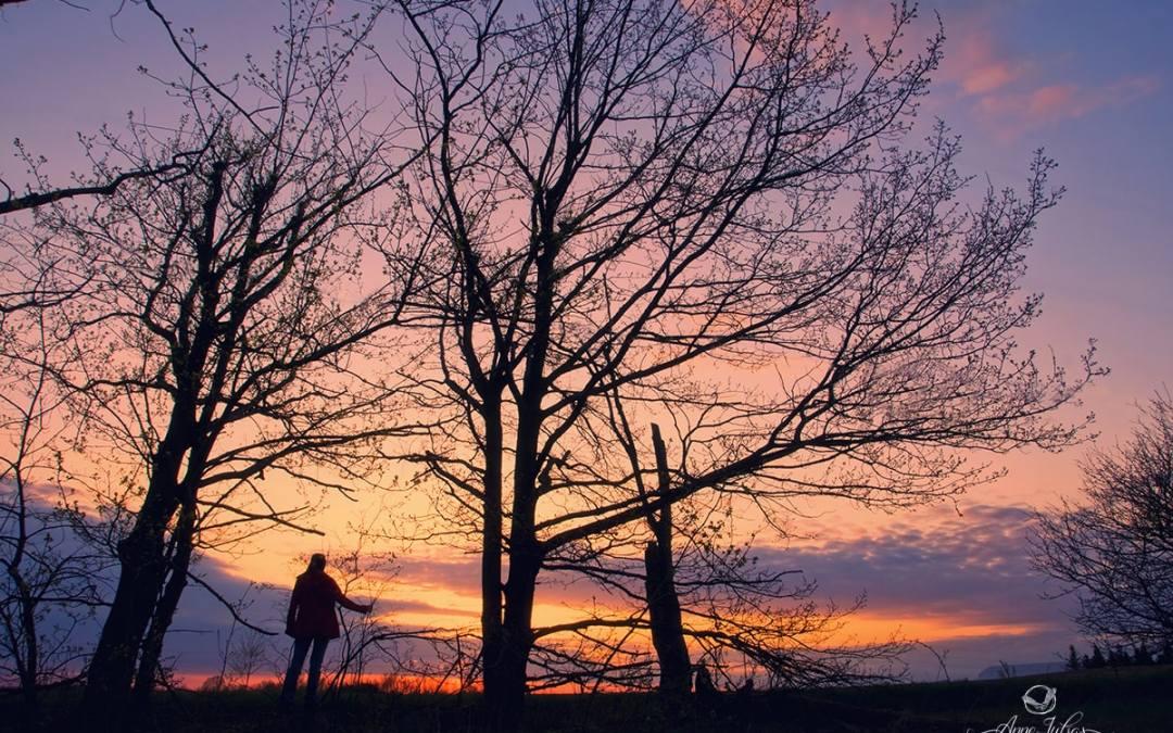 21 Bienfaits que procurent la photographie dans votre vie