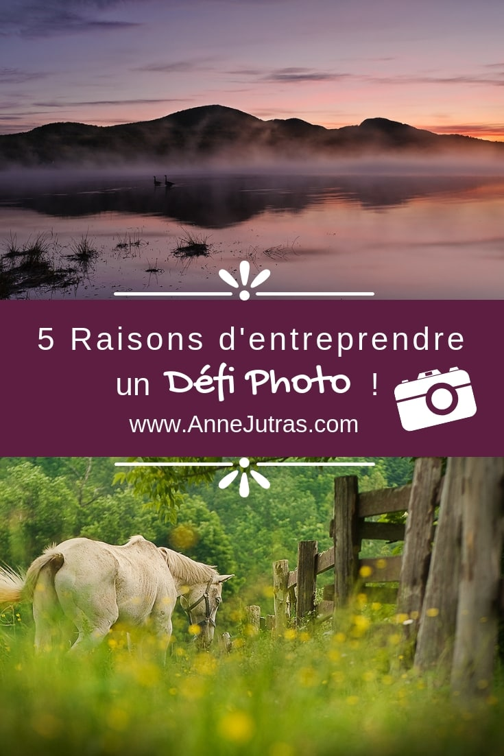5 Bonnes Raisons d'Entreprendre un Défi Photo, par Anne Jutras