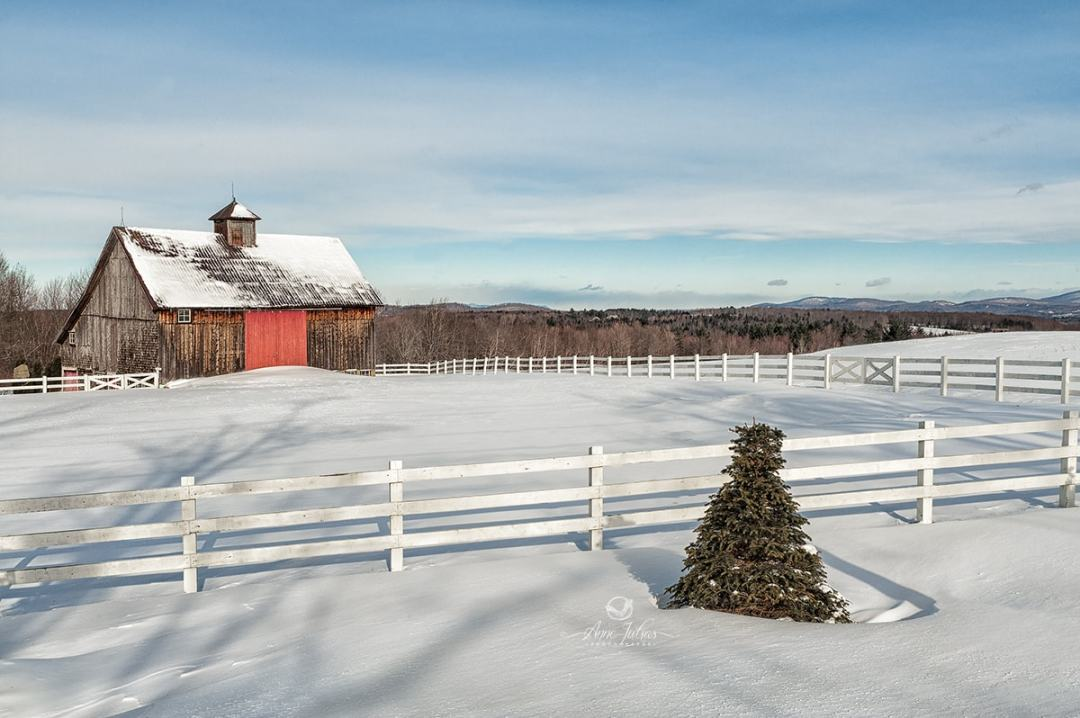 Rehausser un paysage : 4 types de lumière à favoriser
