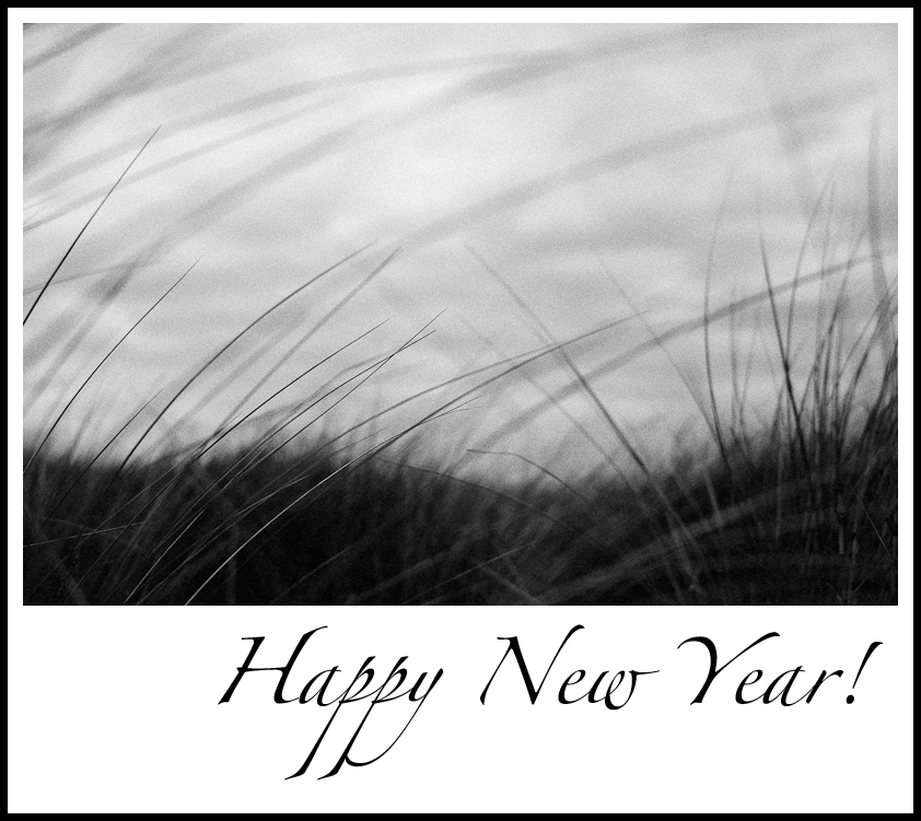Happy_2015_Anne_wright_photography