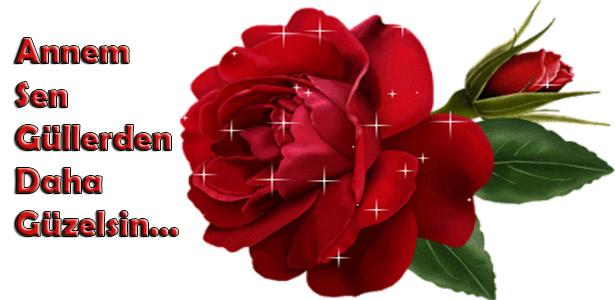 annem sen güllerden daha güzelsin