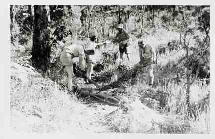 Working bee at Bouddi 1940s