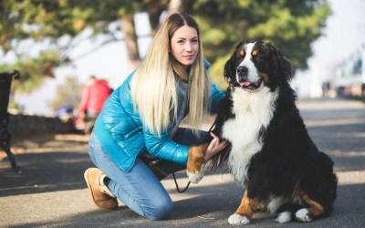 Om hunde-høm-høm-paradokset og hvordan du slipper af med de negative tanker
