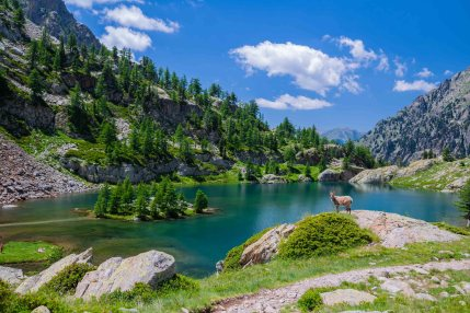 Randonnée Lac Técolpas Mercantour