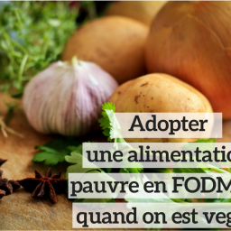 le-carnet-danne-so-alimentation-pauvre-fodmap-vegan