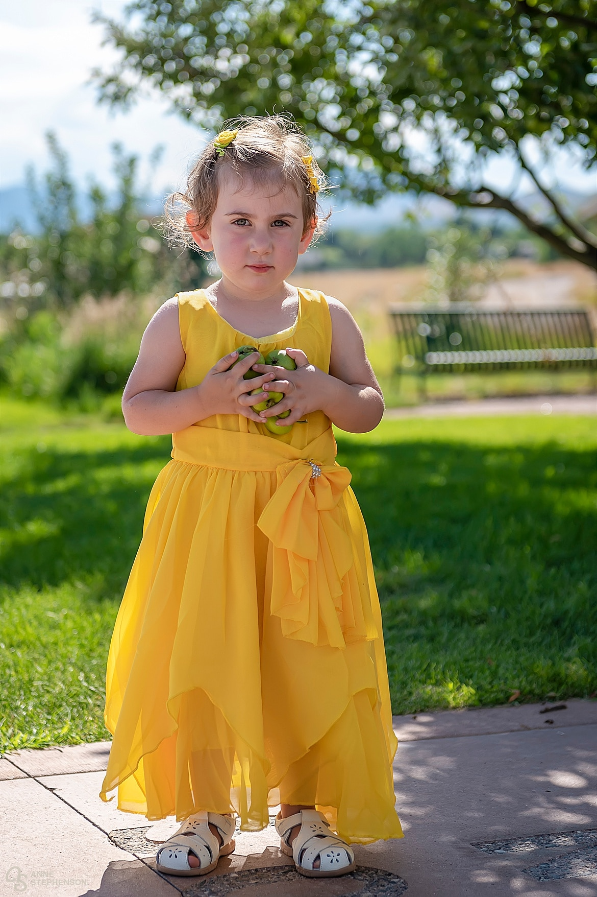 The flower girl collects green apples from the ground prior to the wedding at the Lakewood Heritage Center.
