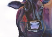 bennett-purplecow23 small pixels