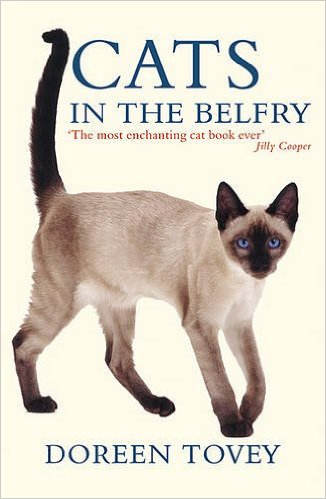 Cats In the Belfy - 2016 edition .